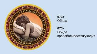 Бесплатные уроки СИНХРОвидения® с Анной Гак! Значение диска Обида