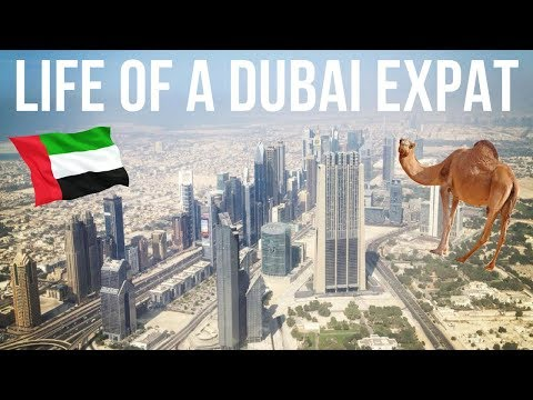 LIFE OF A DUBAI EXPAT | #10 FACTS | REENIE