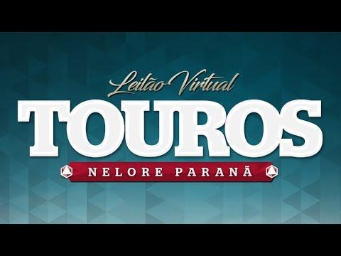 Lote 22 (Favorito do Paranã - PAR 8042)