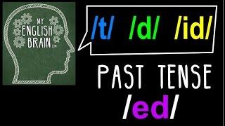 Past Tense (ed) Pronunciation: My English Brain