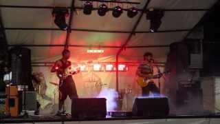 Festival Ciudad Verde - Video Oficial  2013