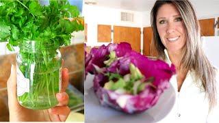 Healing Through Food   Day 14