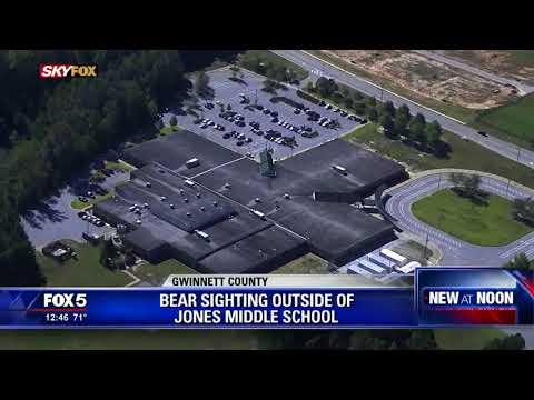 Bear spotted near Gwinnett County middle school