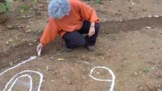 Mandala en la Naturaleza II - Art de Tat / L'Alzina de Collbató