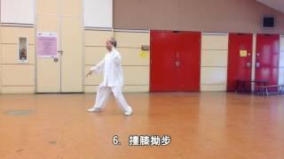 42式太極拳背向慢動作-1 (2013.09.01) 42 Form Tai Chi Slow moving -1 (Back View)