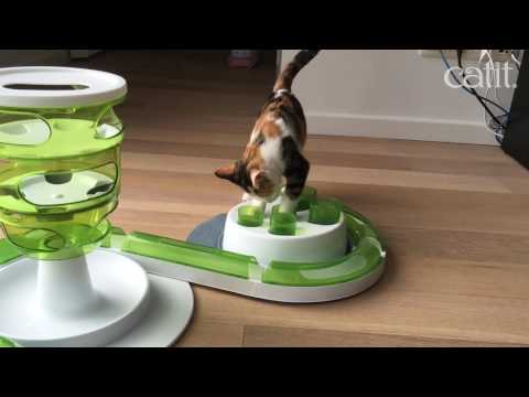 Pixi testing the Catit slow feeding solutions