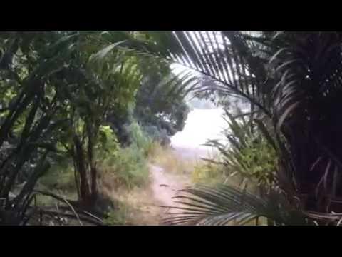 New Chum Beach: Zu Fuß ins Paradies