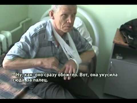 ООО ВОТ ОНА ОБЖИГАЕТ СКАЧАТЬ БЕСПЛАТНО