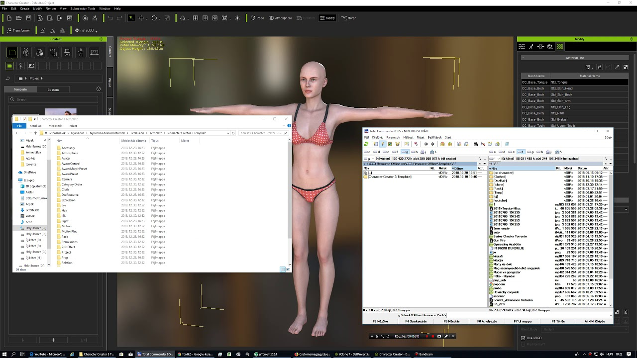 How to install Character Creator 3 Resource pack