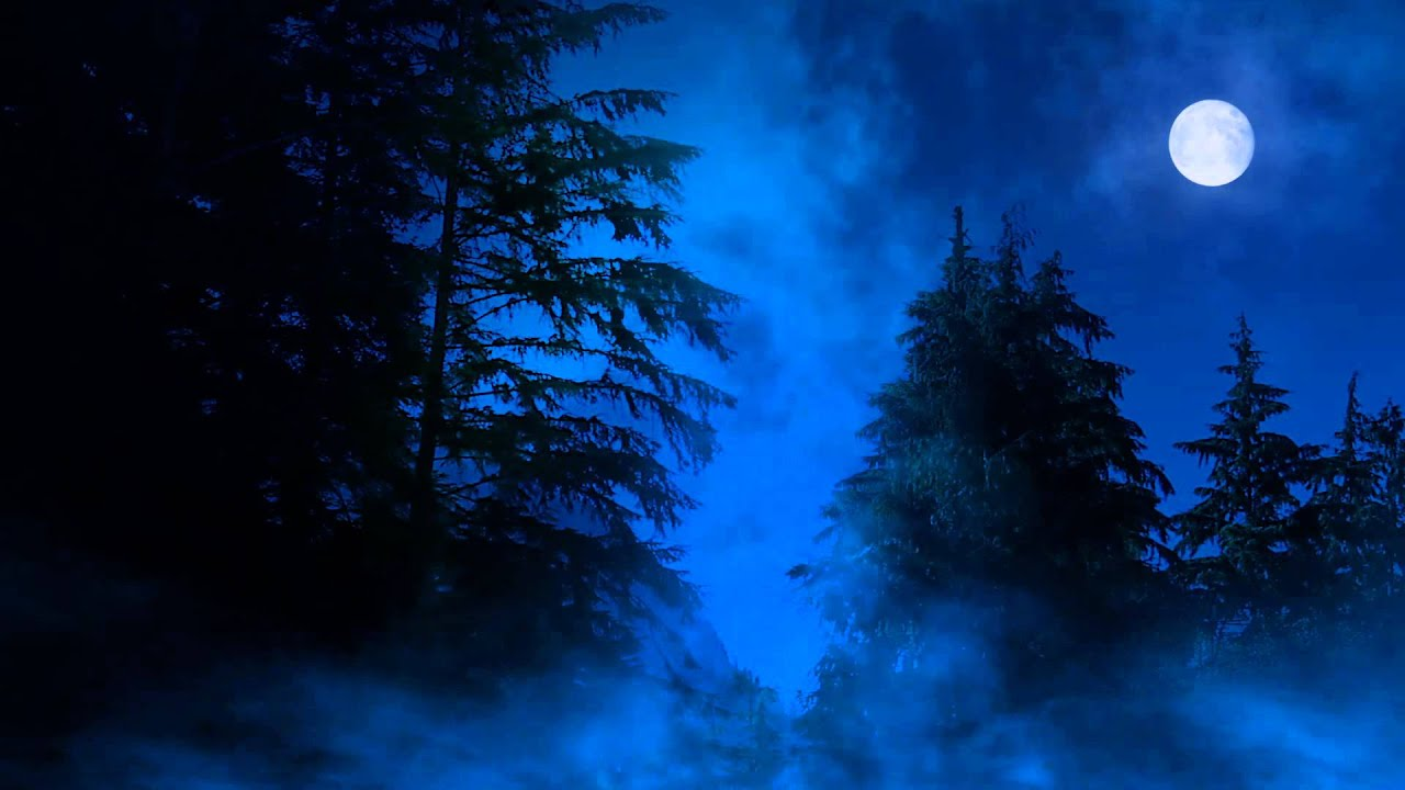 night forest with moon clouds youtube