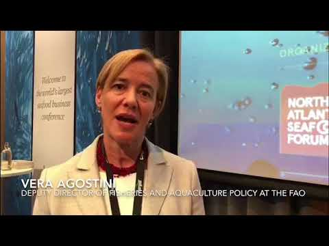 Vera Agostini, Deputy Director Of Fisheries And Aquaculture Policy At The FAO