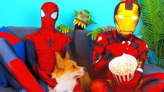 Superheroes And Happy Dog Save A Planet From Monster
