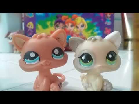 My Lps Kitten Collection