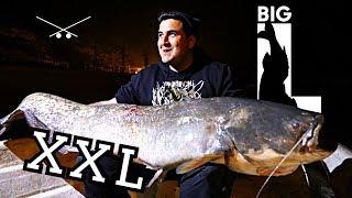 244 CM WELS - XXL MONSTER / Big L angelt am Ebro auf Barsch und Zander