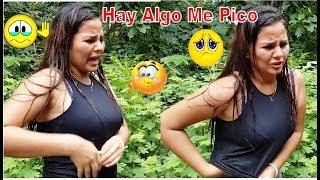 12-Pobre Joselin Algo Le Pico😭🐝, Ya Ni Disfruto A gusto La Sopa De Pollo-De Camino Al Rio-P/12