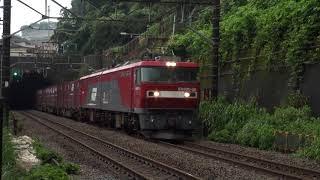 朝の貨物列車、久しぶりの金太郎! 稲城付近 2019/08/20