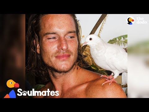 Wild Bird Follows Rescuer Across Spain | The Dodo Soulmates