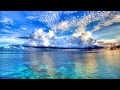 Diviners Feat Contacreast Tropic Love