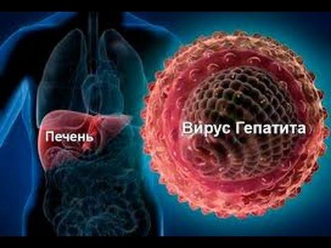 Гепатита С :: Гепатит неизлечим