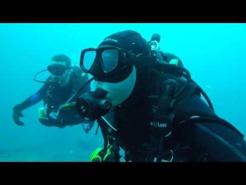 Miami Florida Scuba Diving Ancient Mariner Shipwreck