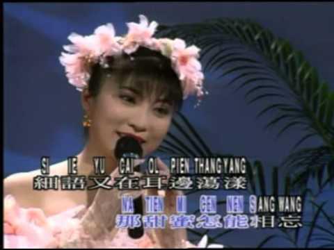 陈思安 - 月光小夜曲 Yue Guang Xiao Yue Qu - Chen Si An