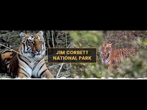 travel Corbett - guide and information