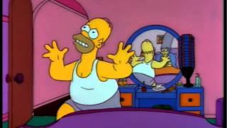 Sarcastic Homer