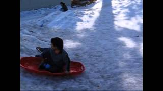 Snow Sledding In Lake Tahoe