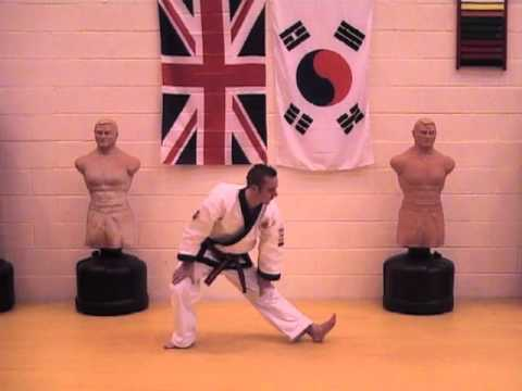 Tang Soo Do The Basics 1