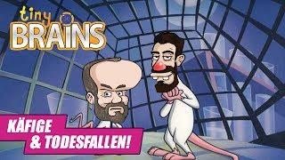 DENKST DU DAS SELBE, WAS ICH DENKE?   Tiny Brains #3 / mit Lars & Todde