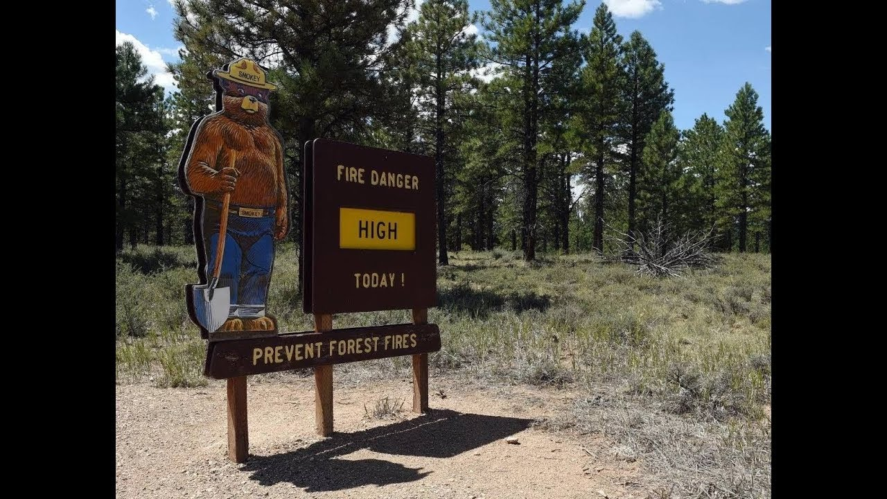 Patcnews March 11, 2019 Reports Smokey The Bear 75th Anniversary And Forest Fires Danger Viral Video