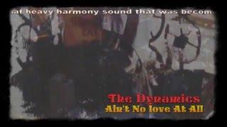 The Dynamics -- Ain