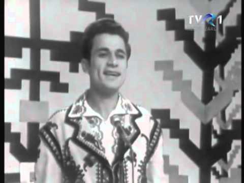 Ion Dolanescu - Toti militarasii vin (1973)