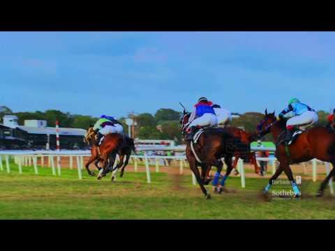 Barbados Sotheby's International Realty ~ Barbados Destination Video