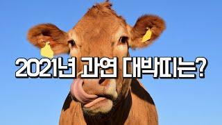 2021년 신축년 대박띠 미리 공개합니다!!