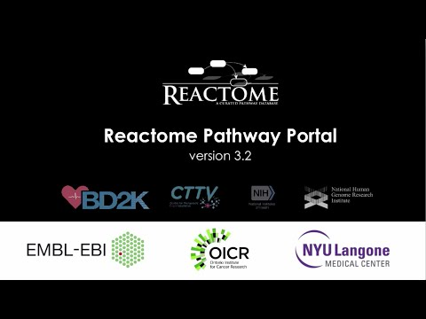 Reactome Pathway Browser 3.2 - Short Introduction