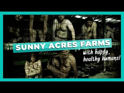 Sunny Acres Farms