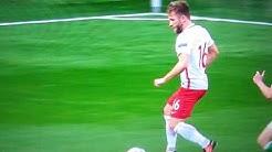EM 2016 Polen gegen Nordirland das Tor