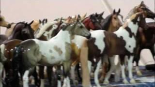 Southwest PA Classic Model Horse Show 2011!