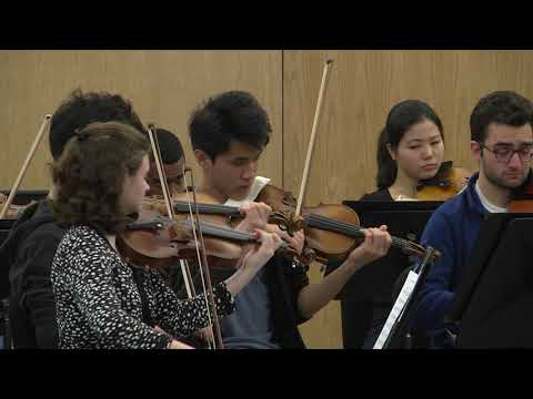 Perlman Music Program Suncoast   January 2nd, 2018 Orchestra Rehearsal