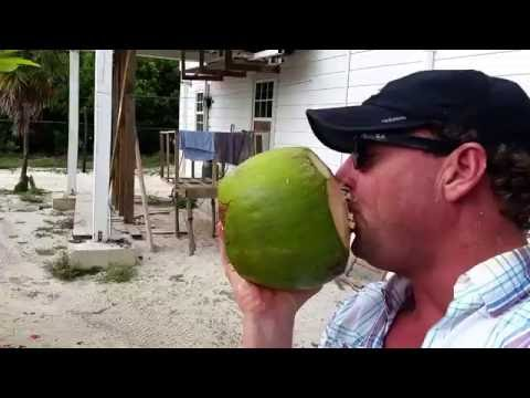 Coconut water in Belize with Carlos