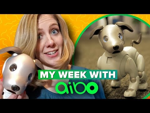 Sony Aibo: what its like to live with a robot dog