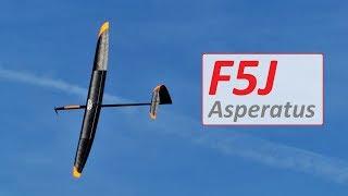 Asperatus F5J biaxial carbon | DNZ Gliders