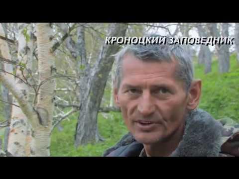 видео: Кроноцкий заповедник или сказочная реальность Владимира Злотникова