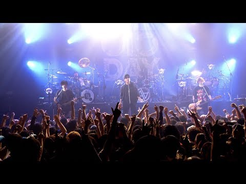 AA= – FREEDOM (Official Live Video from『THE OIO DAY』)