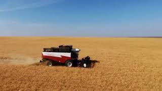 Красивые кадры с квадрокоптера(Работа комбайнов в поле)