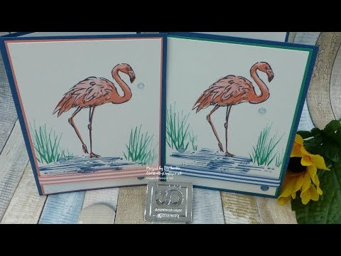 Fabulous Flamingo In Color Special Project and Challenge