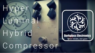 Darkglass Electronics Hyper Luminal   GAME CHANGING PEDAL COMPRESSOR