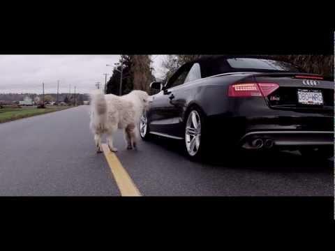 Audi S5 3.0T - Milltek Resonated Catback Exhaust