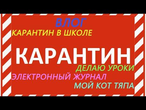 КАРАНТИН в школе/ Делаю УРОКИ/ Электронный ЖУРНАЛ/ Мой КОТ Тяпа/ВЛОГ